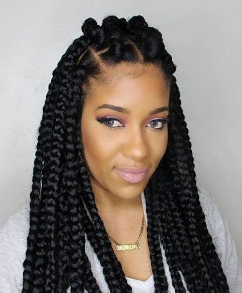 Gros Box Braids With Top Bantu Knots